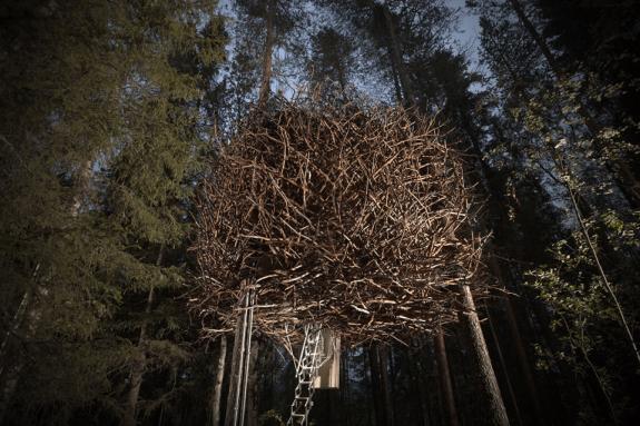 Vogelnest-Bird nest boomhut Treehotel Zweden