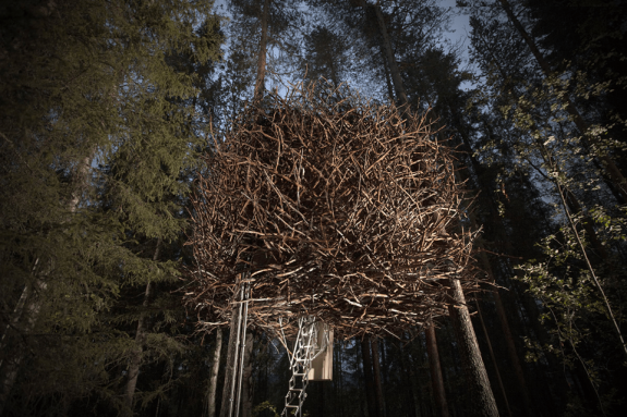 Boomhut de vogelnest van Treehotel in Zweden