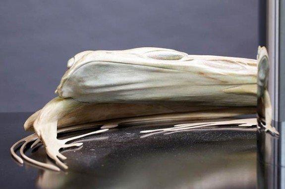 Stijlmagazine-kunst-art-Jonty Hurwitz-anamorphose-frog