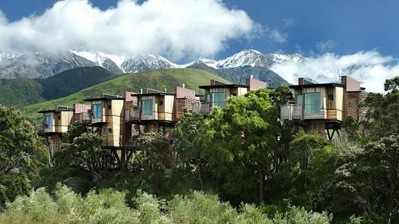 Hapuku Lodge + Tree Houses overiew boomhutten